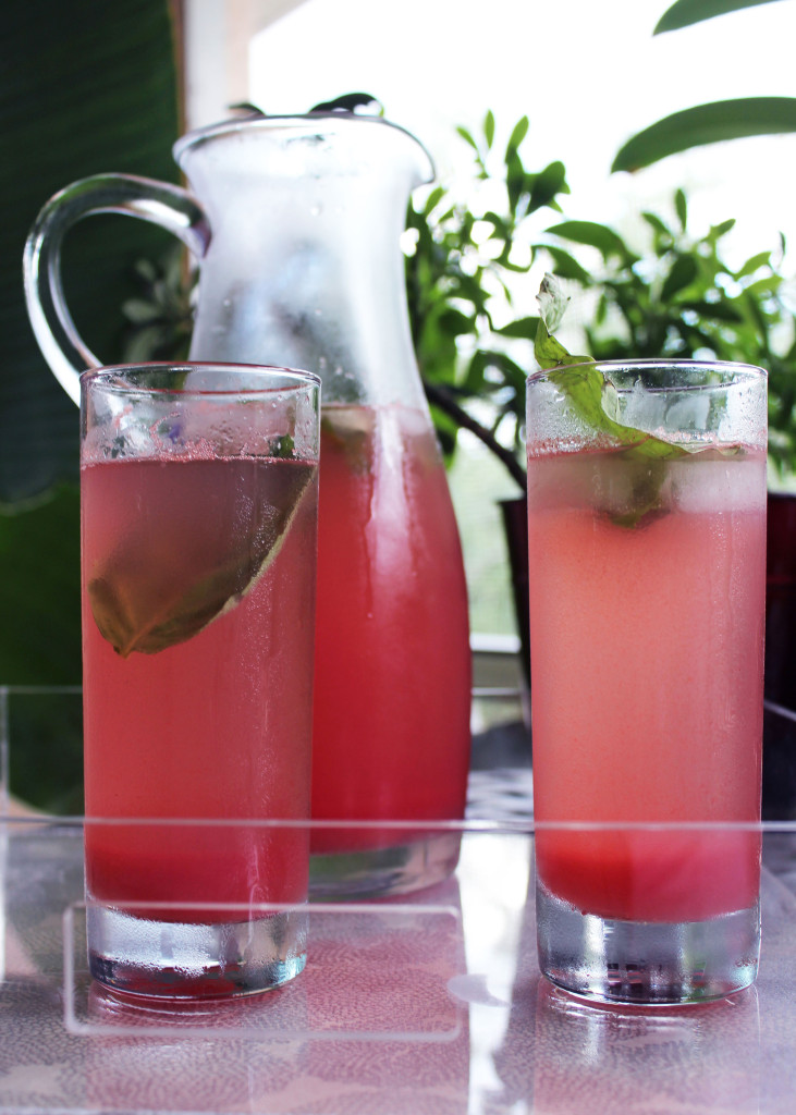 How to: Watermelon Basil Spritzer
