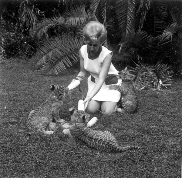 The Old Naples: Naples Zoo at Caribbean Gardens
