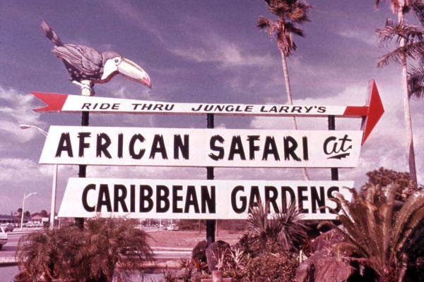 The Old Naples: Naples Zoo at Caribbean Gardens Through the Years